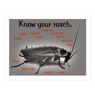 RoachWear Postcard