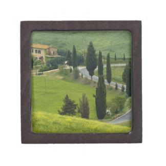 Road from Pienza to Montepulciano, 2 Premium Gift Box