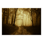 Road in a dark forest with fog poster