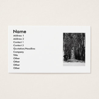 Road In A Park Business Card