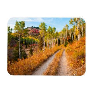 Road Through Autumn Colors Rectangular Photo Magnet