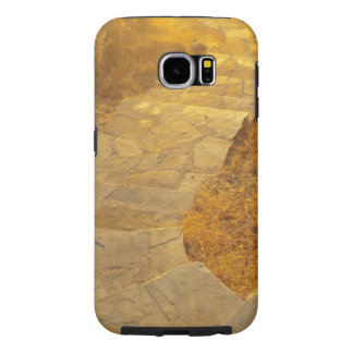 road to paradise samsung galaxy s6 cases