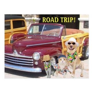 ROAD TRIP! POSTCARD
