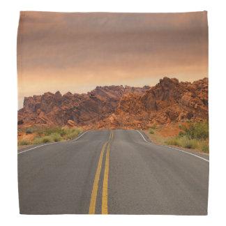 Road trip sunset bandana