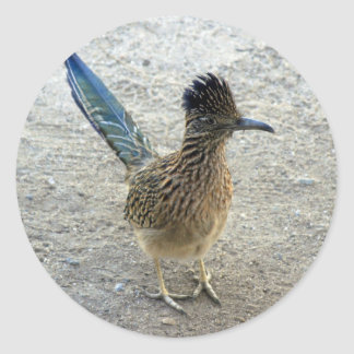 Roadrunner Classic Round Sticker