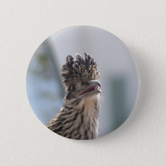 Roadrunner Close-up 2 Inch Round Button