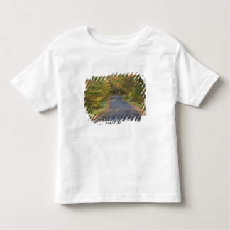 Roadside fall foliage, Southern Vermont, USA T-shirts