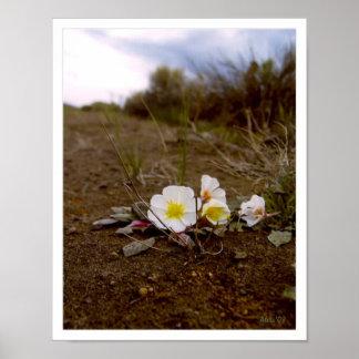 Roadside Flower Print