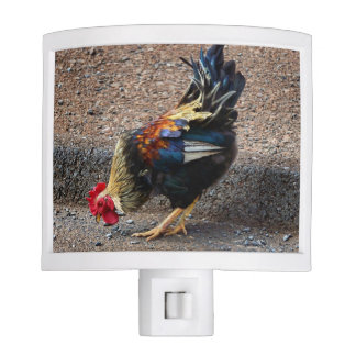 Roam Free Night Light
