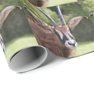 Roan Antelope Wrapping Paper