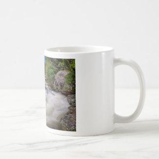 Roaring Colorado Ouzel Creek Coffee Mug