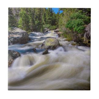 Roaring Colorado Ouzel Creek Tile