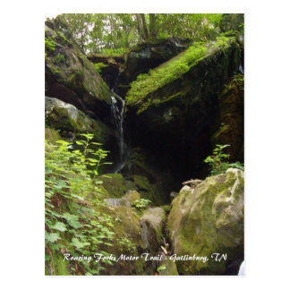 Roaring Forks Motor Trail - Gatlinburg, TN Postcard