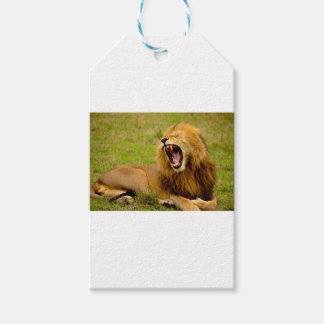 Roaring Lion Gift Tags