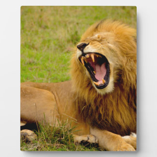 Roaring Lion Plaque