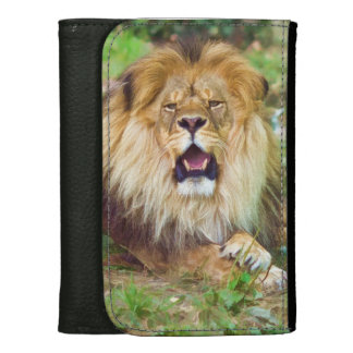Roaring Lion Women's Wallet