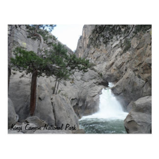 Roaring River Falls- Kings Canyon National Park Postcard