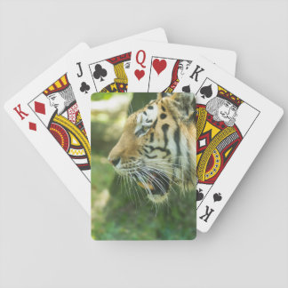 Roaring Tiger Poker Deck
