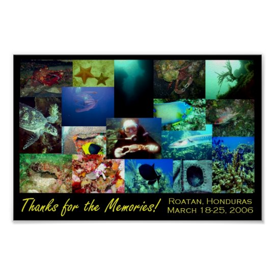 Roatan Collage Poster