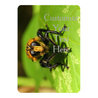 Robber Fly Card