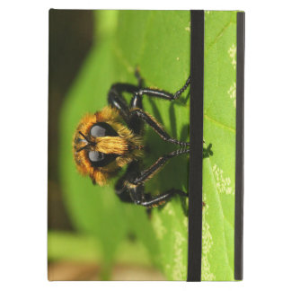 Robber Fly iPad Air Cases