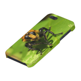 Robber Fly iPhone 5 Cover