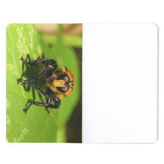 Robber Fly Journals