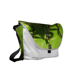 Robber Fly Messenger Bags