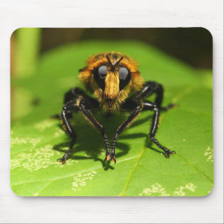 Robber Fly Mouse Pad