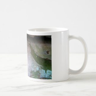 Robber's Cave State Park Classic White Coffee Mug