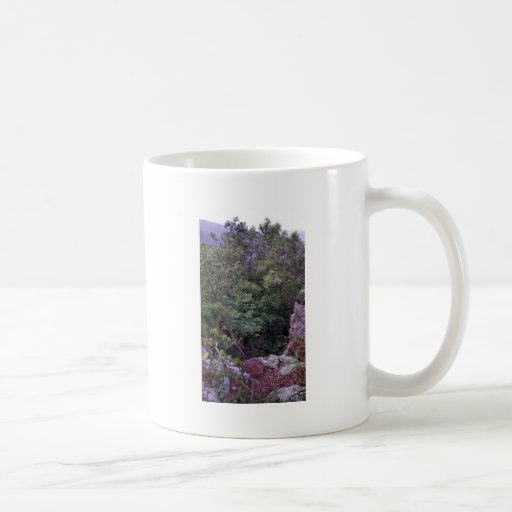 Robber's Cave State Park Mugs