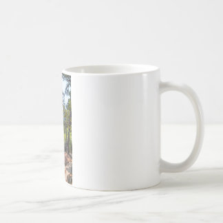 Robber's Cave State Park Coffee Mugs