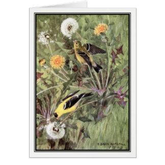 Robert Bruce Horsfall - Vintage American Goldfinch Card
