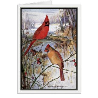 Robert Bruce Horsfall - Vintage Cardinal Card
