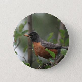 Robin 2 Inch Round Button