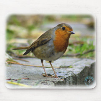 Robin 9P52D-139 Mouse Pad