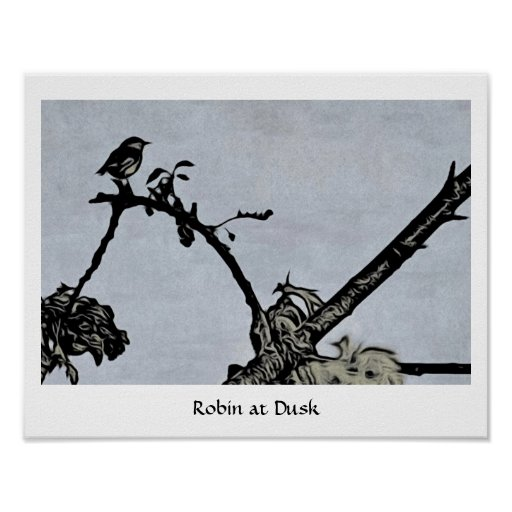 Robin a Dusk Poster