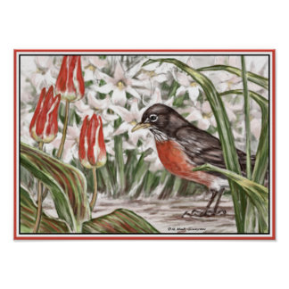 Robin and Red Tulips Spring Flowers Painting Posters