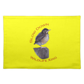 robin, baby robin placemats