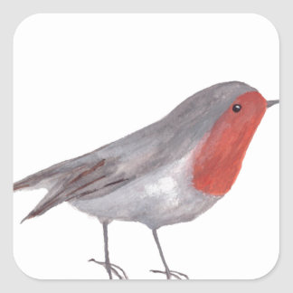 Robin bird square sticker