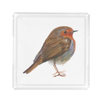 Robin Bird Watercolor Painting Artwork Redbreast Acrylic Tray