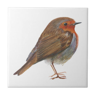 Robin Bird Watercolor Painting Artwork Redbreast Tile
