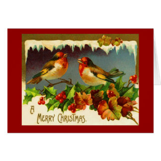 Robin Christmas card - Red robin and Holly