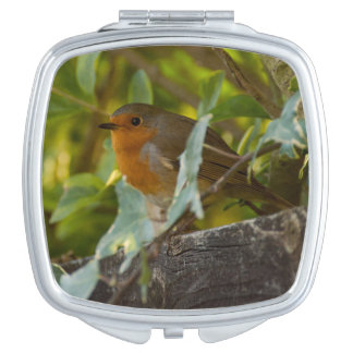 Robin Compact Mirrors