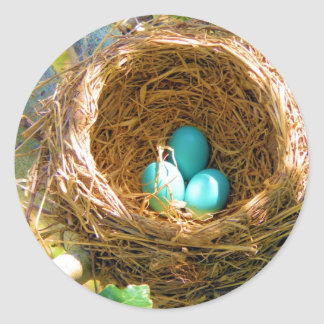 Robin Eggs in a Backyard Tree Nest Classic Round Sticker