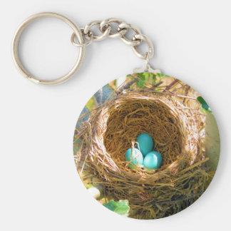 Robin Eggs in a Backyard Tree Nest Key Chain
