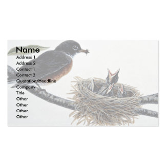 Robin feeding young business card template