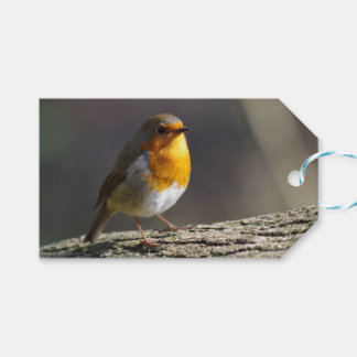 Robin Gift Tags