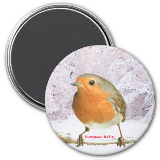 Robin image for Large Round Magnet
