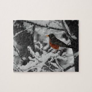 Robin in Color on Black and White Background Jigsaw Puzzle